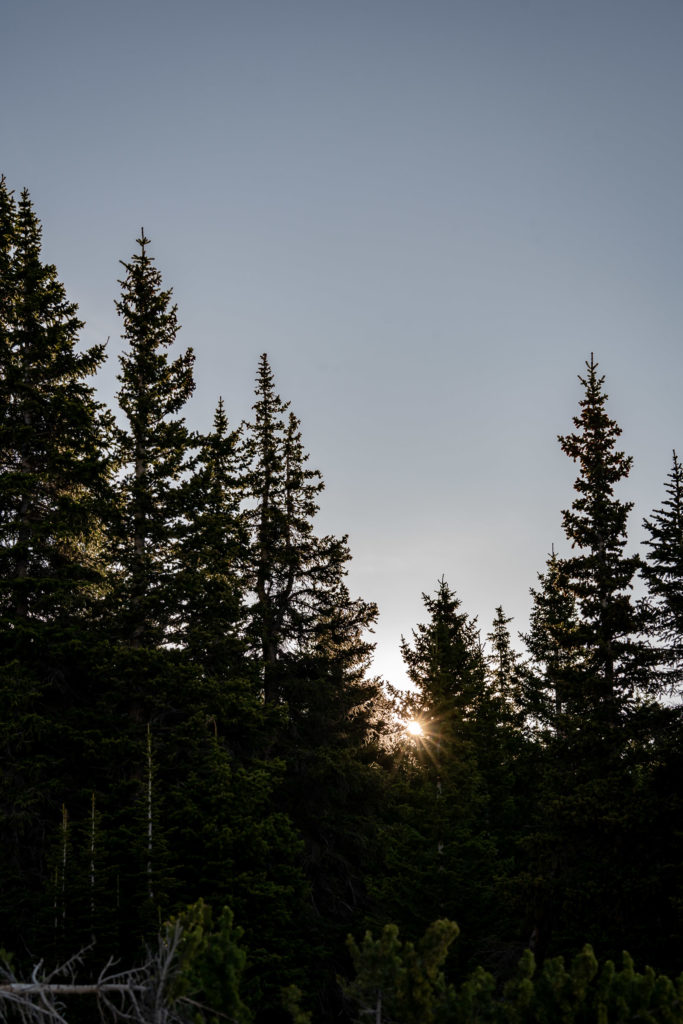The sun peeking up behind the trees in the early morning. Photo by Gabby Jockers Photography. Same sex wedding, lesbian elopement, lesbian wedding, lgbt elopement, lgbtqia wedding, lgbt wedding, colorado elopement, colorado elopement photography, berthoud pass, sunrise elopement, hiking elopement, spring wedding, mountain wedding, adventure photos, mountain elopement, spring elopement, adventure elopement, denver colorado photographer, elopement photographer