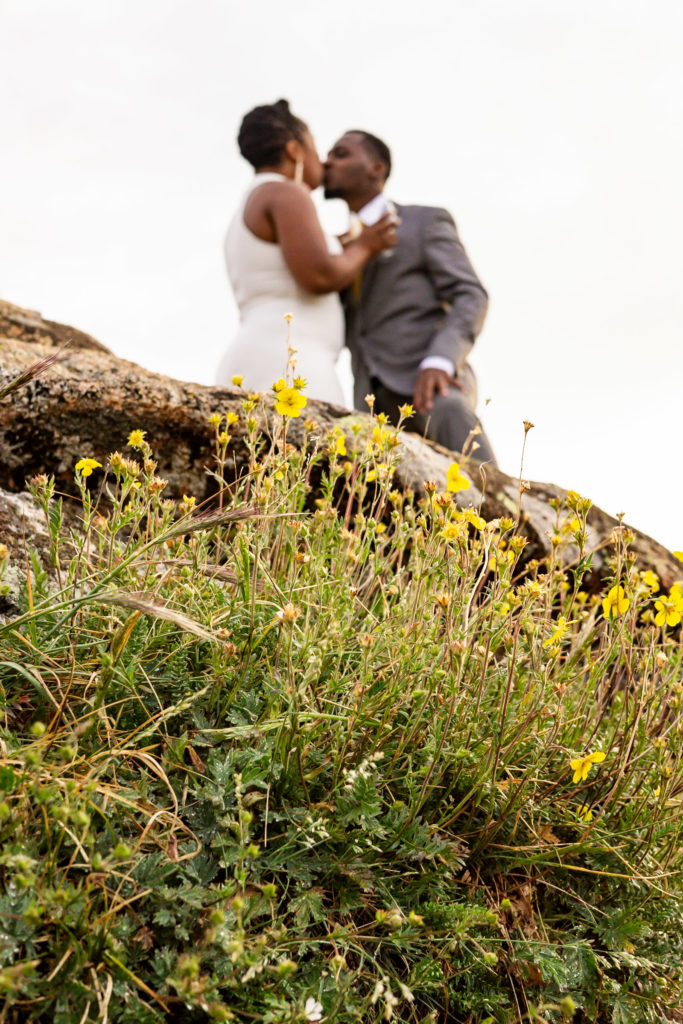 Some little yellow wildflowers in the foreground in focus, while a couple wearing wedding clothes is kissing in the background. Photo by Gabby Jockers Photography. Rocky Mountain National Park elopement photography, Rocky Mountain National Park elopement photos, Rocky Mountain National Park elopement, Colorado elopement ideas, Colorado elopement inspiration, elopement ideas, elopement photography, mountain elopement, national park elopement, outdoor elopement, adventure elopement, Black couple, Black elopement, Black wedding