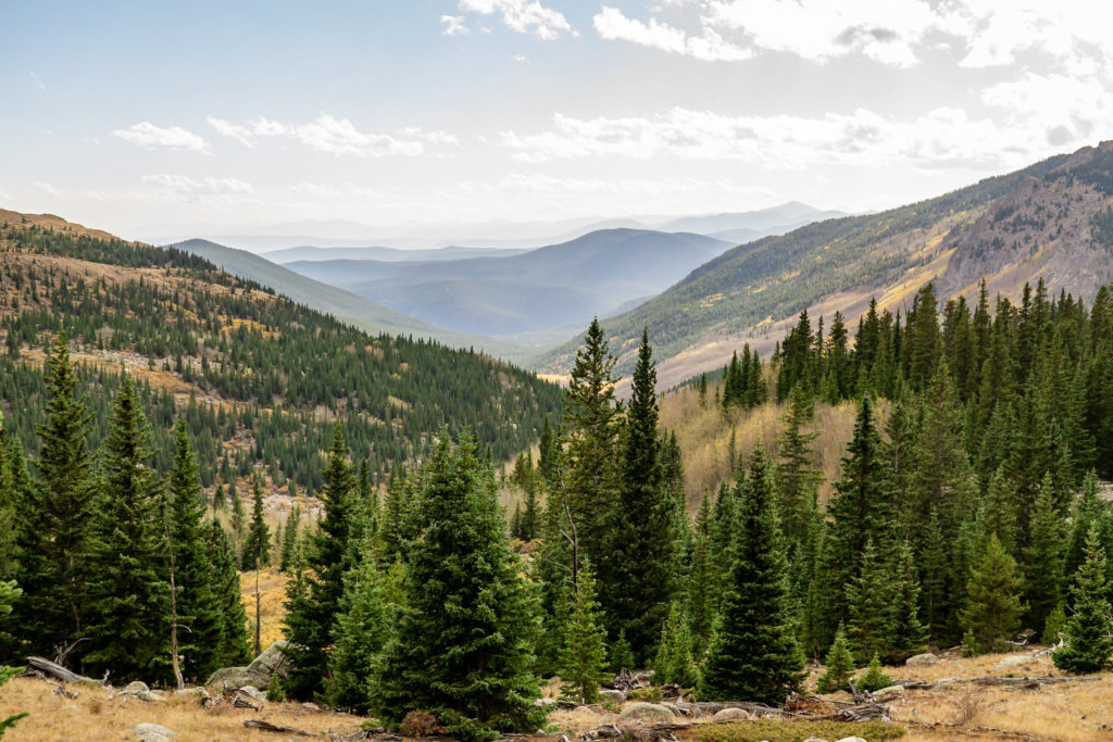Landscape of a mountain valley with pine trees in the foreground. Photo by Gabby Jockers Photography. Colorado elopement ideas, elopement inspiration, elopement ideas, Colorado elopement photographer, Colorado elopement photography, hiking elopement, backpacking elopement, Rocky Mountain national park wedding, rocky mountains, backpacking wedding, camping wedding, fall wedding, adventure wedding, adventurous elopement, mountain elopement, elopement with dog, dog of honor, best dog