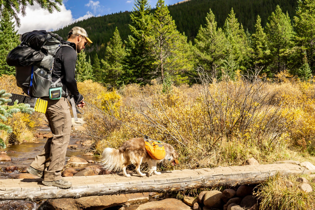 A man is hiking across a log bridge with his backpack and dog. Photo by Gabby Jockers Photography. Colorado elopement ideas, elopement inspiration, elopement ideas, Colorado elopement photographer, Colorado elopement photography, hiking elopement, backpacking elopement, Rocky Mountain national park wedding, rocky mountains, backpacking wedding, camping wedding, fall wedding, adventure wedding, adventurous elopement, mountain elopement, elopement with dog, dog of honor, best dog