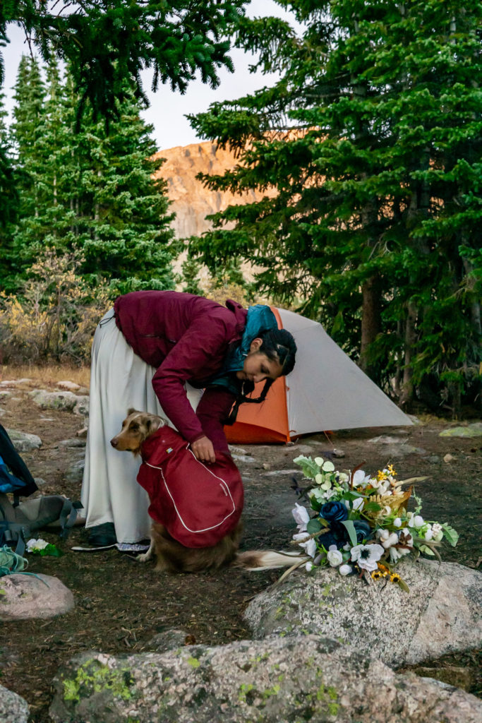 A bride wearing a white dress and fastening her dog of honors backpack at their campsite. Photo by Gabby Jockers Photography. Colorado elopement ideas, elopement inspiration, elopement ideas, Colorado elopement photographer, Colorado elopement photography, hiking elopement, backpacking elopement, Rocky Mountain national park wedding, rocky mountains, backpacking wedding, camping wedding, fall wedding, adventure wedding, adventurous elopement, mountain elopement, elopement with dog, dog of honor, best dog