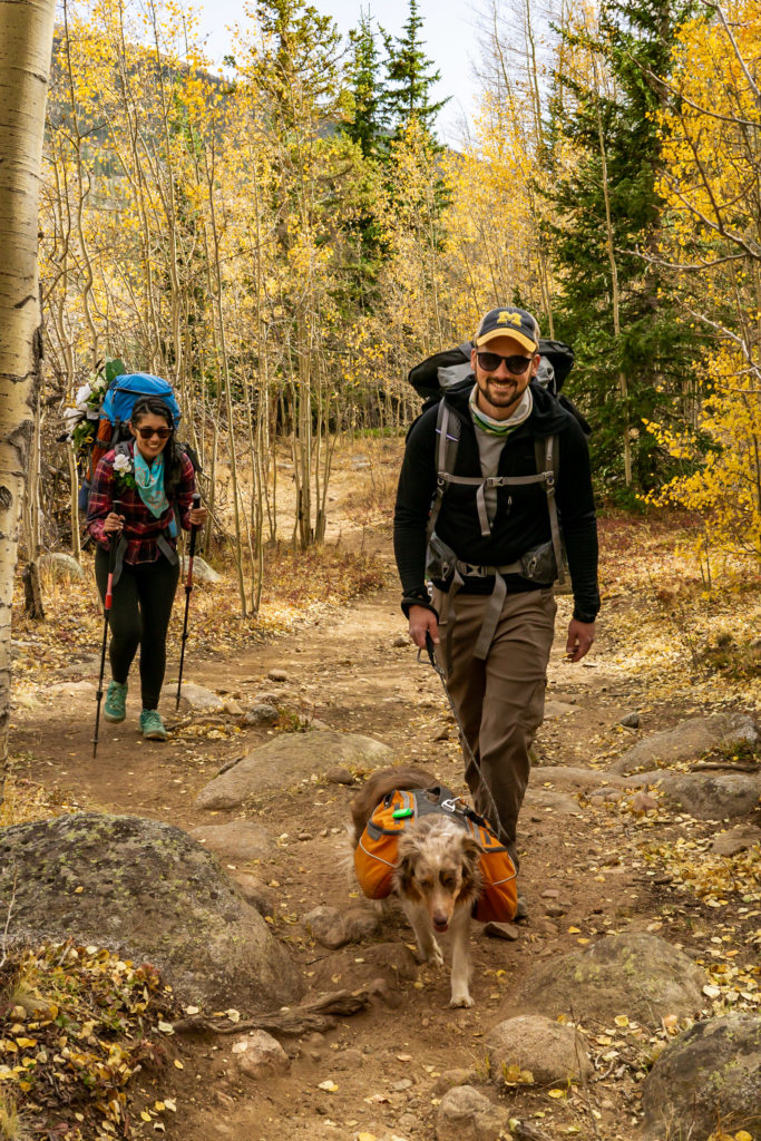 A couple hiking down the trail with their dog surrounded by fall golden aspens. Photo by Gabby Jockers Photography. Colorado elopement ideas, elopement inspiration, elopement ideas, Colorado elopement photographer, Colorado elopement photography, hiking elopement, backpacking elopement, Rocky Mountain national park wedding, rocky mountains, backpacking wedding, camping wedding, fall wedding, adventure wedding, adventurous elopement, mountain elopement, elopement with dog, dog of honor, best dog