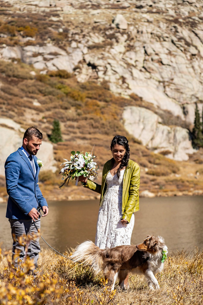 A couple looks at their dog of honor / best dog in front of an album lake. The bride wears a lace dress while holding a silk bouquet and green leather jacket and groom wears a blue sports coat. Photo by Gabby Jockers Photography. Colorado elopement ideas, elopement inspiration, elopement ideas, Colorado elopement photographer, Colorado elopement photography, hiking elopement, backpacking elopement, Rocky Mountain national park wedding, rocky mountains, backpacking wedding, camping wedding, fall wedding, adventure wedding, adventurous elopement, mountain elopement, elopement with dog, dog of honor, best dog